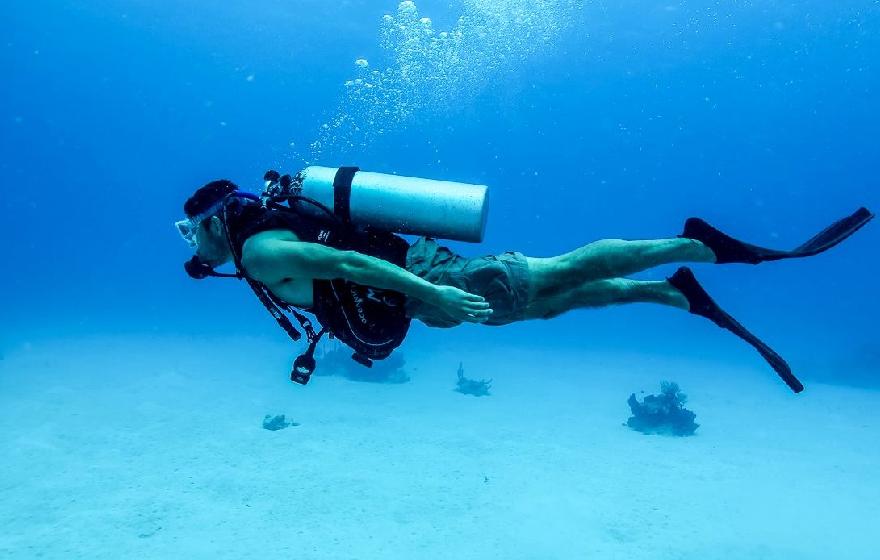 Ontario Universities Diving Program